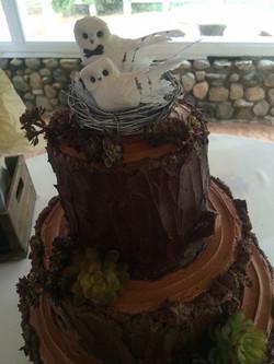Tree Stump Wedding 2 of 2