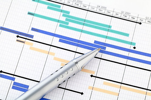 Project Management Skills Simulation