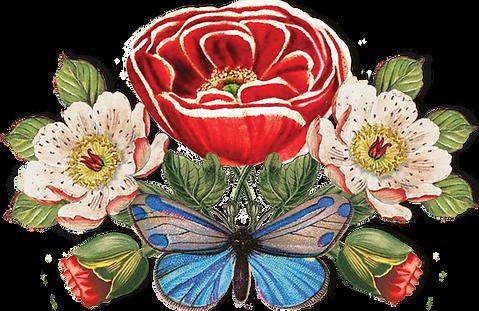 big rose flor floral coleção comemorativa 10 anos pip studio