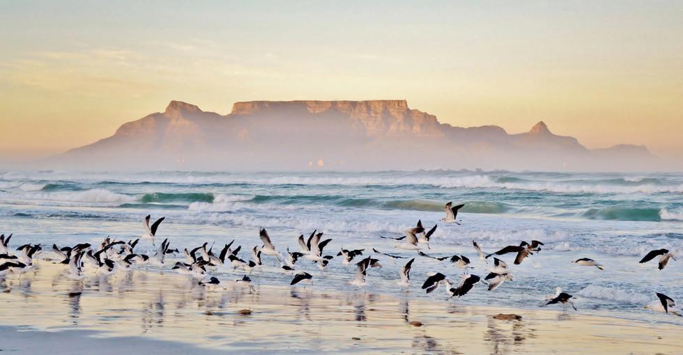 South Africa-06.jpg