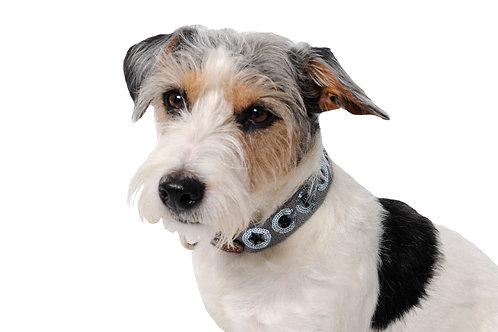 Spooks Dog Collar