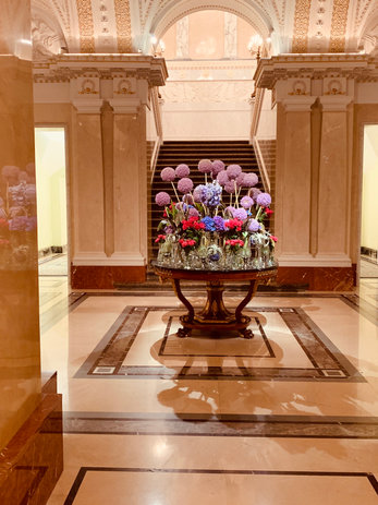 lily vivier luxury travel buddy