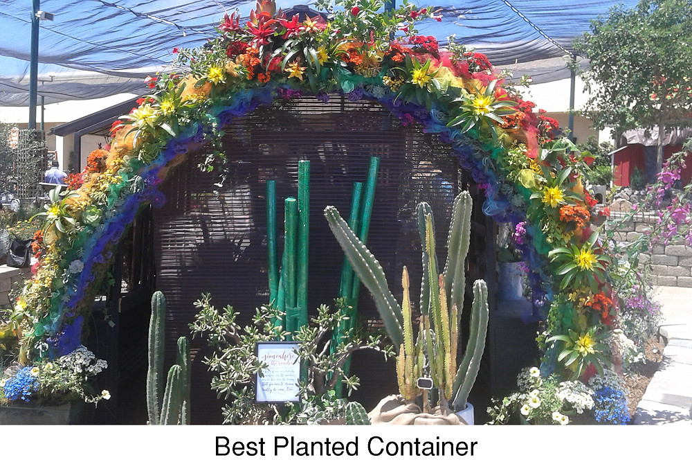 Best Planted Container