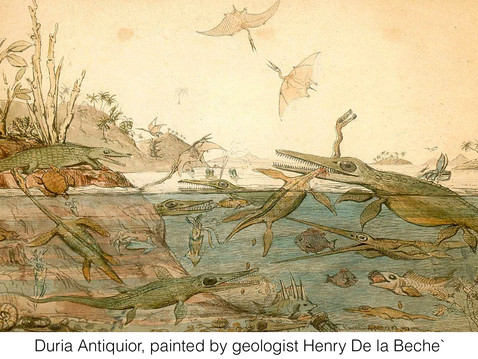 THE REAL DIRT ON: Mary Anning, or She Who Sells Seashells