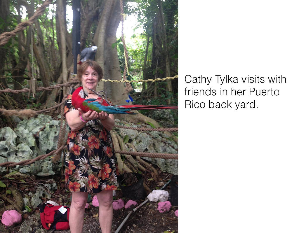 Cathy Tylka visits with friends in her Puerto Rico back yard.