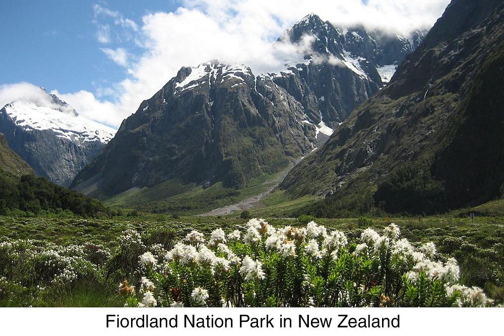 Fiordland Nation Park in New Zealand.
