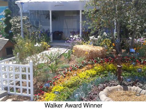 Winners of SDHS Fair Awards