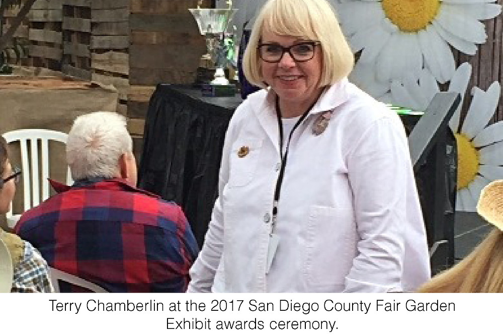 Terry Chamberlin at the 2017 San Diego County Fair Garden Exhibit awards ceremony.