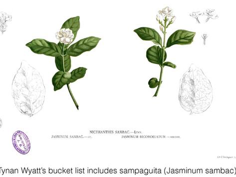 SHARING SECRETS: Garden and Horticulture Bucket Lists