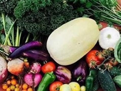 GROW WITH ABUNDANCE: Summer Garden Harvesting Tips