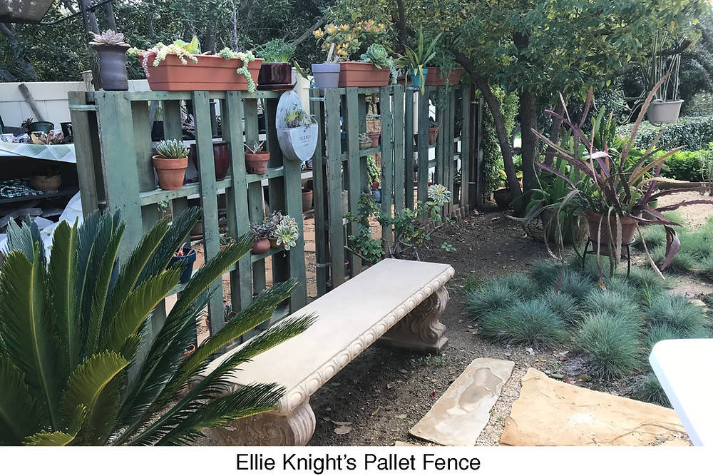 Ellie Knight's Pallet Fence