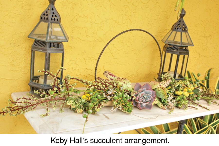 Koby Hall's succulent arrangement.