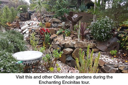 Visit this and other Olivenhain gardens during the Enchanting Encinitas tour.