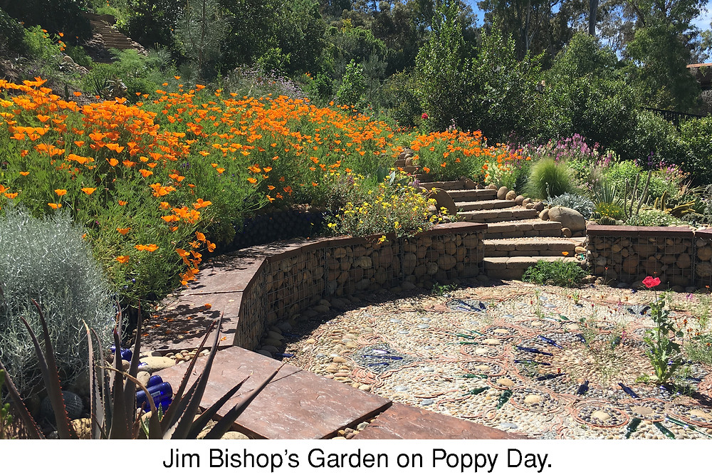 Jim Bishop's Garden on Poppy Day.
