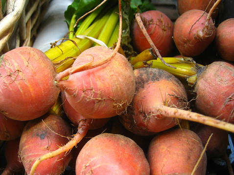 GROW WITH ABUNDANCE: Laying Down Roots in a Healthy Winter Garden