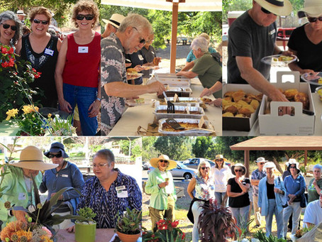 NEWS: 2017 Volunteer Appreciation Picnic