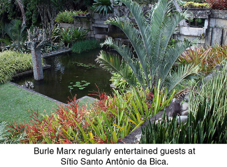 THE REAL DIRT ON:Roberto Burle Marx: Brazilian Modernist Landscape Architect