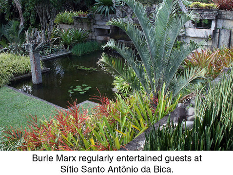 THE REAL DIRT ON:Roberto Burle Marx: Brazilian Modernist Landscape Architect