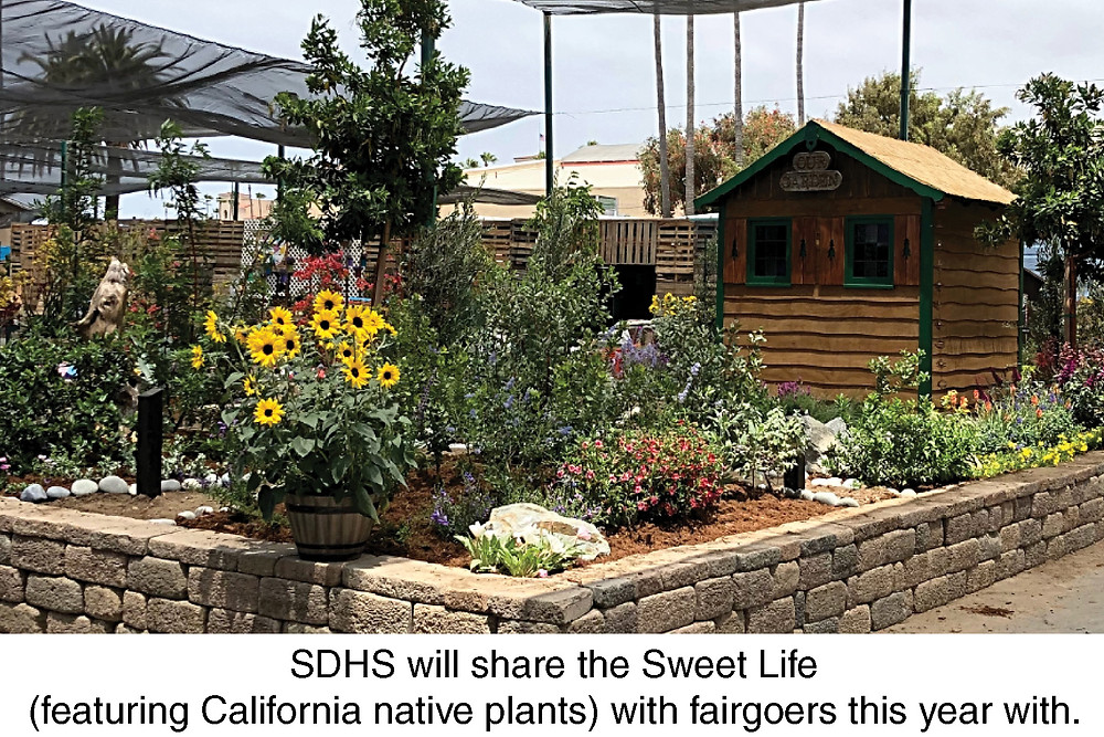 SDHS will share the Sweet Life (featuring California native plants) with fairgoers this year with.