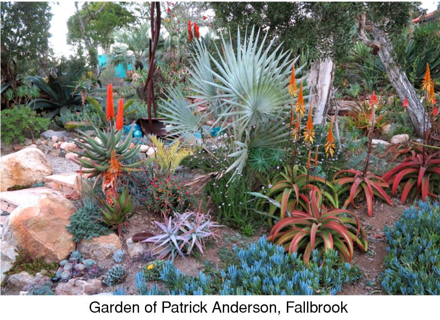 Garden of Patrick Anderson, Fallbrook