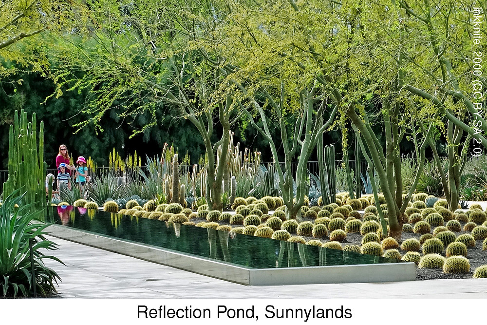 Reflection Pond, Sunnylands.  Photo credit:  inkknife_2000 (CC BY-SA 2.0)
