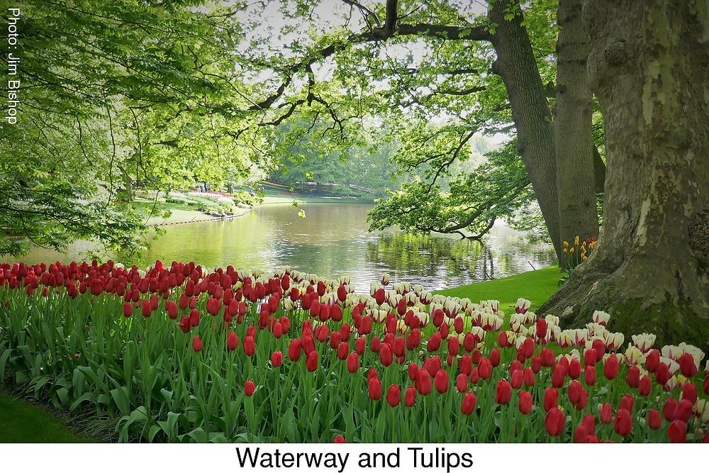 Waterway and Tulips  Attribution: Jim Bishop.