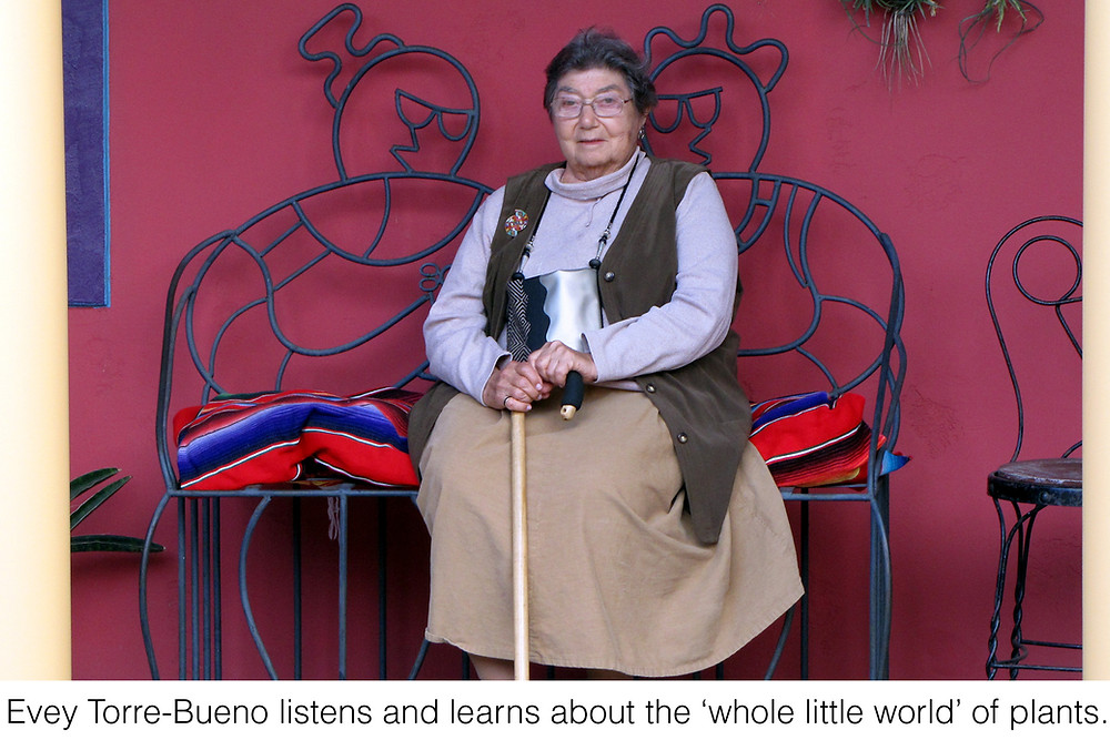 Evey Torre-Bueno listens and learns about the 'whole little world' of plants.