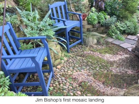MY LIFE WITH PLANTS: Makin' Mosaics: Part I