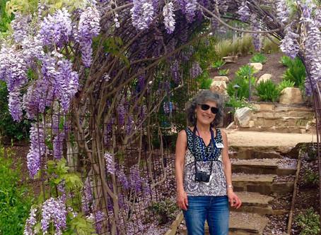 VOLUNTEER SPOTLIGHT: Barbara Raub: Plant Lover, Artist, and More