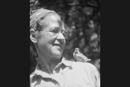 THE REAL DIRT ON: Ynés Mexía: A Short (but Impressive!) Career in Botany