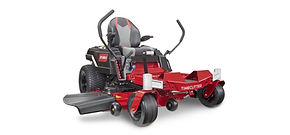 Toro Timecutter mower from Smith's A-1