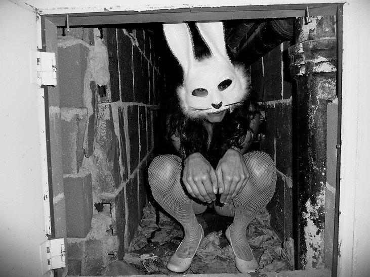 bunny hole_2011.jpg