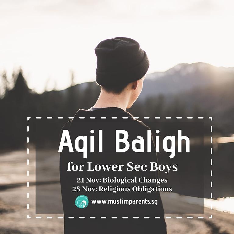 Aqil Baligh: Lower Sec Boys (ZOOM Course)