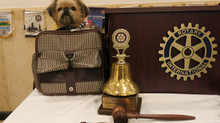 Moo Moo the therapy dog in Rotarian Magazine
