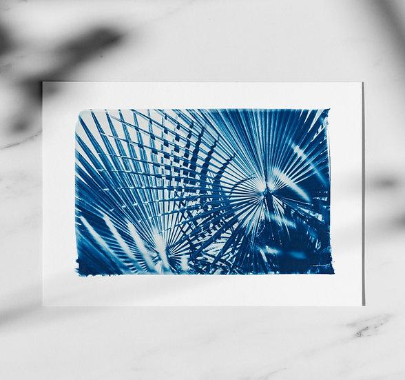 """""""Palmiers"""" Print"""