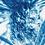Thumbnail: As seasons unfold //  Original Cyanotype
