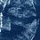 Thumbnail: Washed away // 25 // Original Cyanotype Print