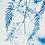Thumbnail: Rêveries Nomades // 2 //  Original Cyanotype