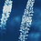 Thumbnail: Rêveries Nomades // 1 // Original Cyanotype
