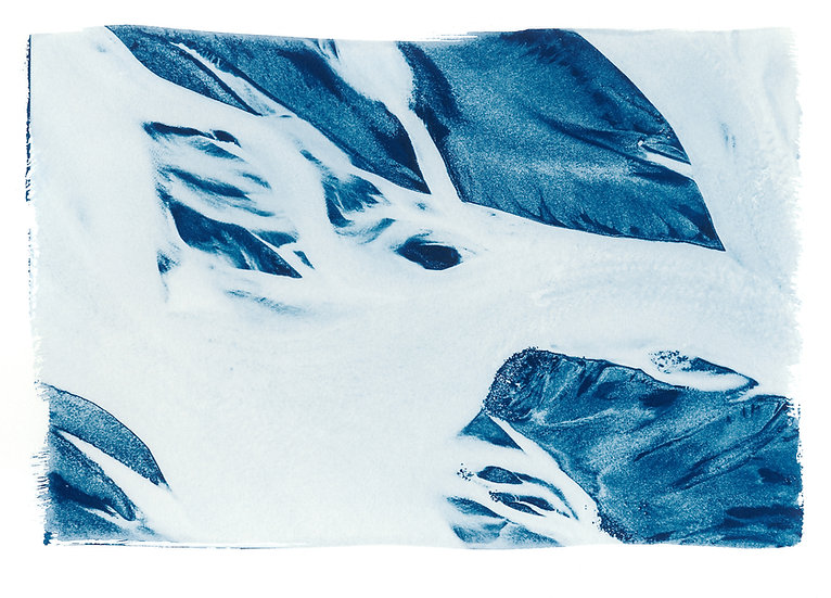 Abstract // 41 // Original Cyanotype Print