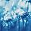 Thumbnail: Rêveries Nomades // 6 //  Original Cyanotype