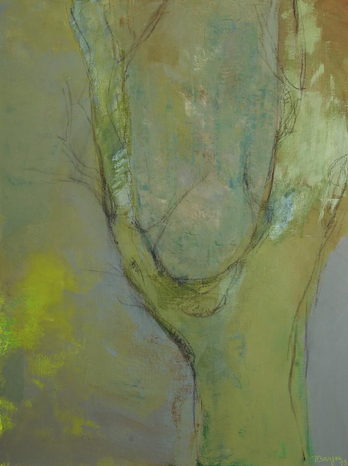 """""""l'arbre berceau"""""""
