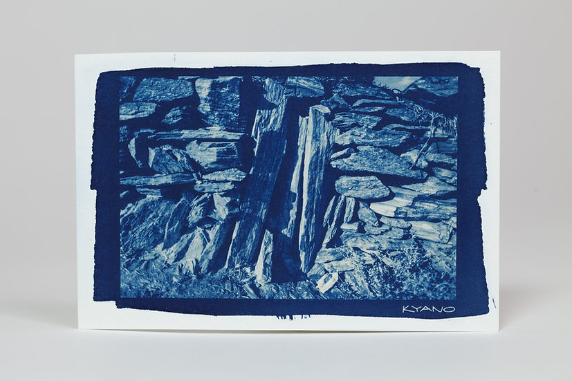 """Wall"" cyanotype postcard"