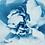 Thumbnail: Love has bloomed //  Original Cyanotype