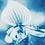 Thumbnail: Rêveries Nomades // 5 //  Original Cyanotype