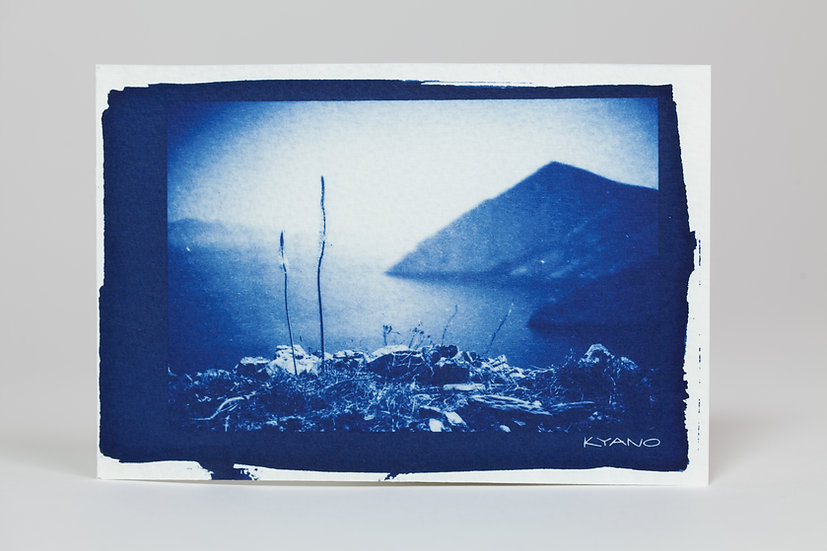 """Sea view"" cyanotype postcard"