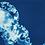 Thumbnail: Rêveries Nomades // 12  // //  Original Cyanotype