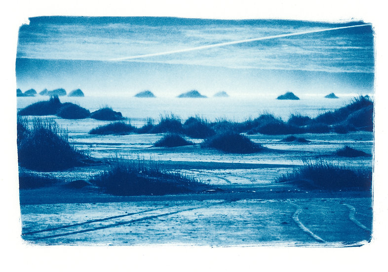 Layers of beauty // 70 // Mini Cyanotype on Arches Platine Paper