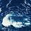 Thumbnail: Walking towards the light // 29 // Original Cyanotype Print