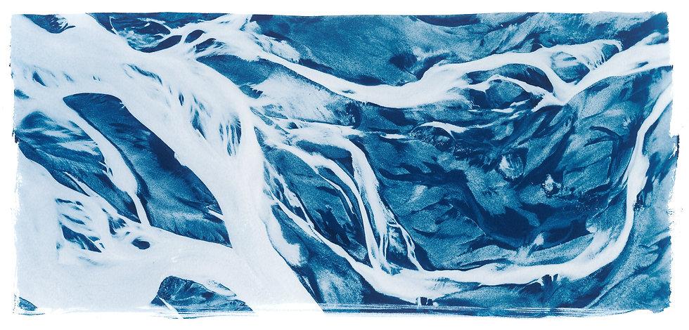 Cosmic Network // 05 // Original Cyanotype Print